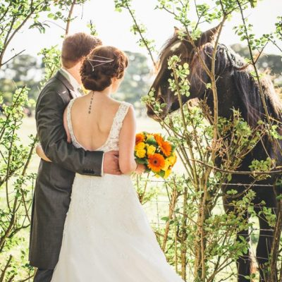 bride with groom and a horse